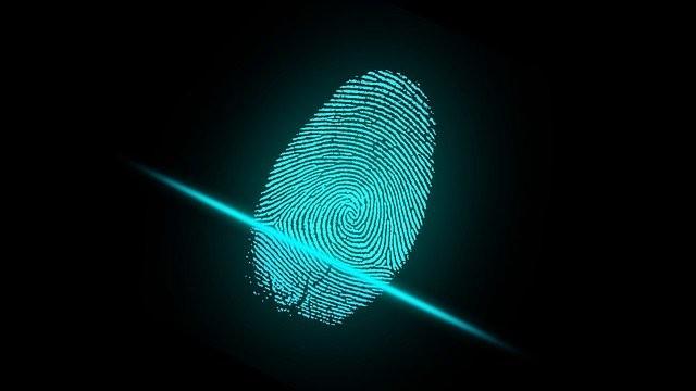 The Future of Digital Identity
